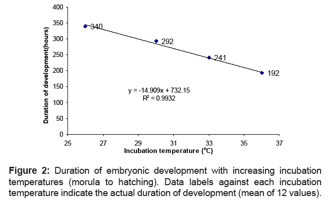 Effect of Temperatures on the Embryonic Development ...