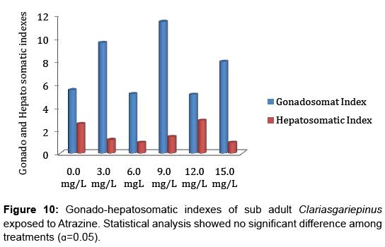aquaculture-research-development-hepatosomatic