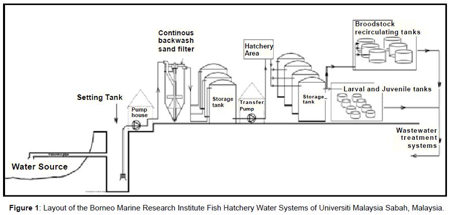 aquaculture-research-development-layout-borneo-marine
