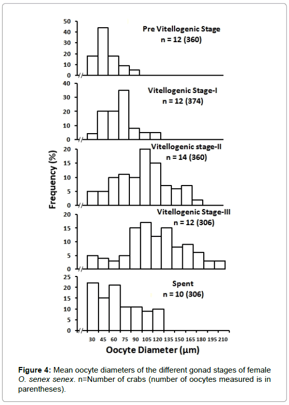 aquaculture-research-development-mean-oocyte-diameters