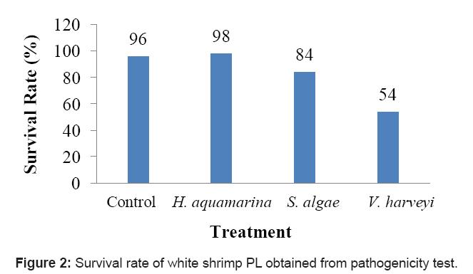 aquaculture-research-development-pathogenicity