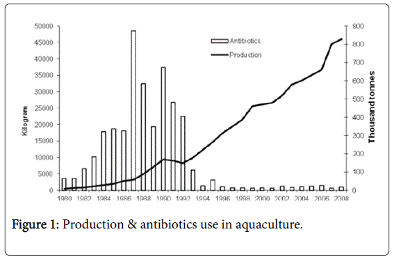 aquaculture-research-development-production-antibiotics