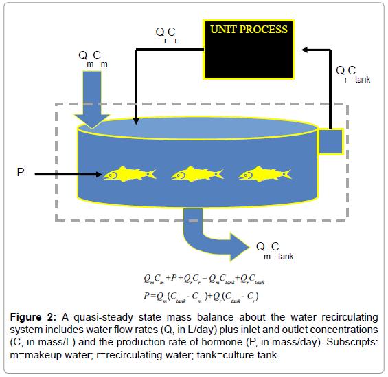 aquaculture-research-development-quasi-steady-state