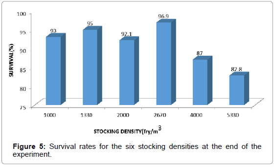 aquaculture-research-development-survival-stocking-densities