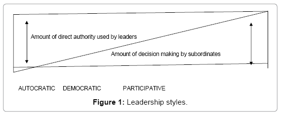 Effect of Leadership Style on Employee Performance | OMICS