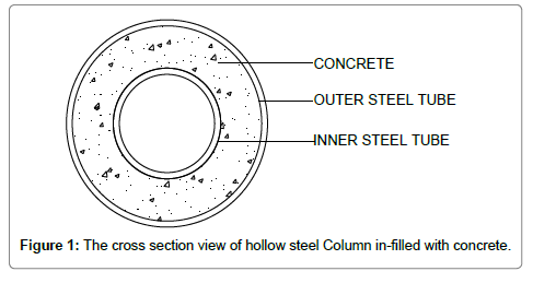 Behaviour of Double Skinned Composite Columns with Concrete Filled