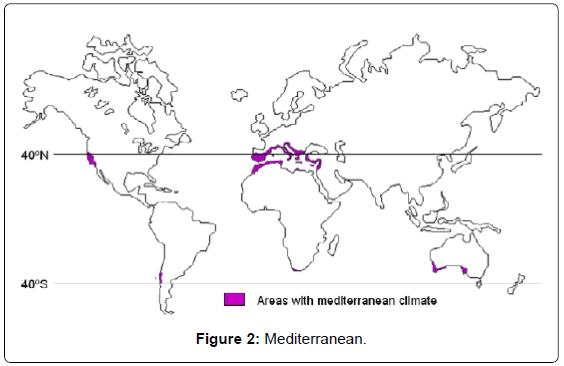 architectural-engineering-technology-mediterranean