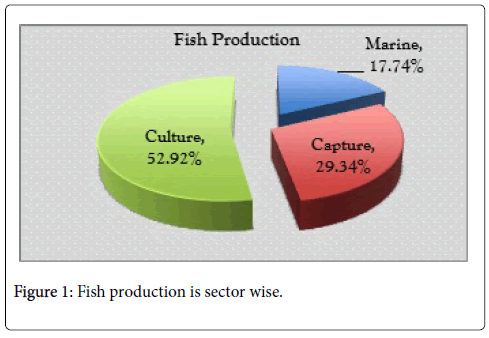 archive-business-and-economics-journal-open-access-Fish-production