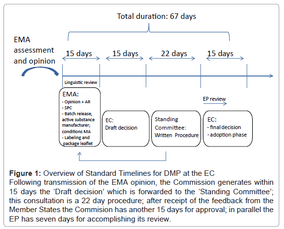 archive-pharmaceutical-regulatory-affairs-Overview-Standard-Timelines