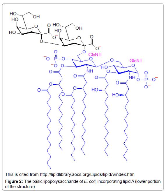 archive-pharmaceutical-regulatory-affairs-basic-lipopolysaccharide