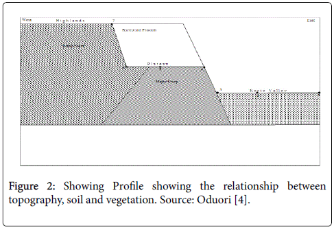 arts-and-social-sciences-journal-Showing-Profile