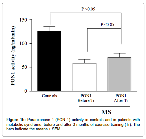atherosclerosis-metabolic-syndrome
