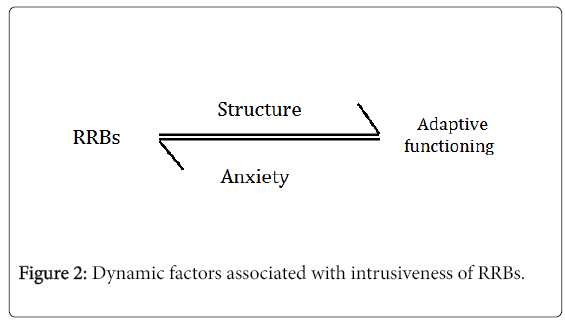 autism-Dynamic-factors
