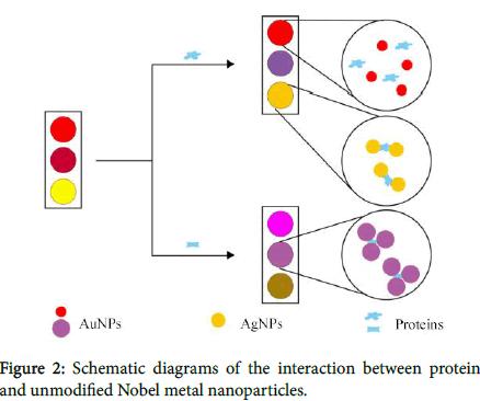bacteriology-parasitology-Nobel-metal-nanoparticles