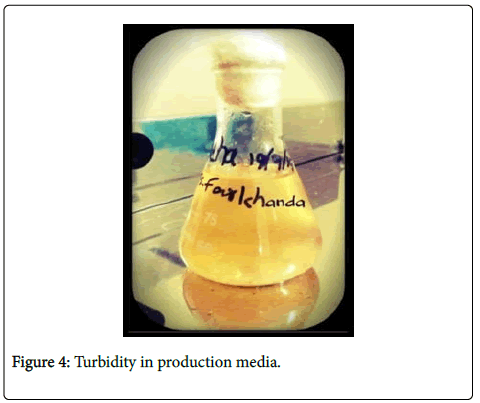 bacteriology-parasitology-production-media
