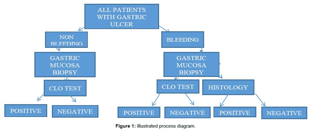 bioanalysis-biomedicine-Illustrated-process-diagram
