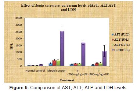 bioanalysis-biomedicine-comparison-levels