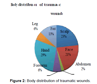bioanalysis-biomedicine-distribution-traumatic-wounds