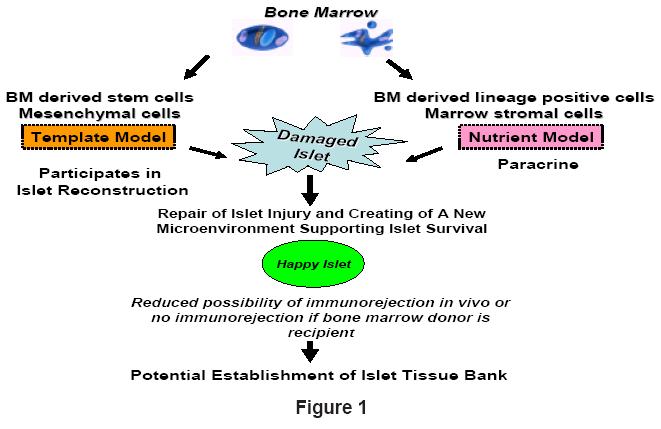 bioanalysis-biomedicine-establishment