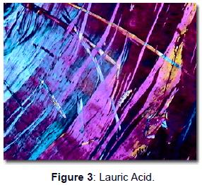 bioanalysis-biomedicine-lauric-acid