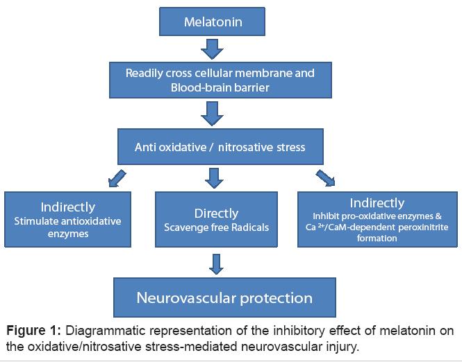 bioanalysis-biomedicine-neurovascular
