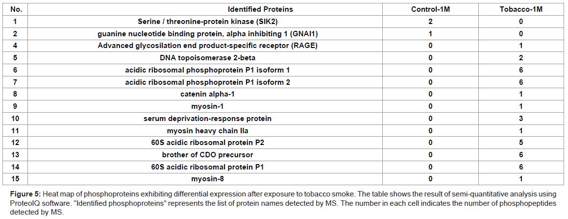 bioanalysis-biomedicine-phosphoproteins-tobacco-smoke