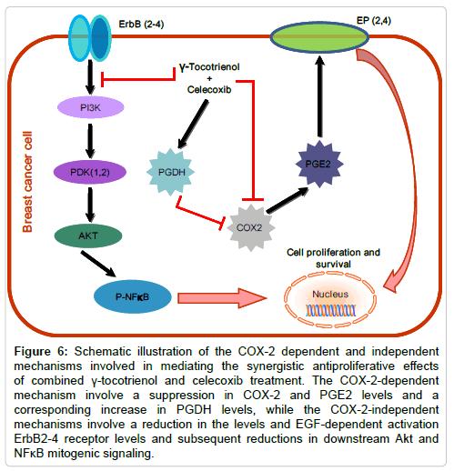 bioanalysis-biomedicine-schematic-illustration
