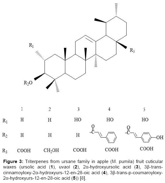 escort germany molecule parfume matas
