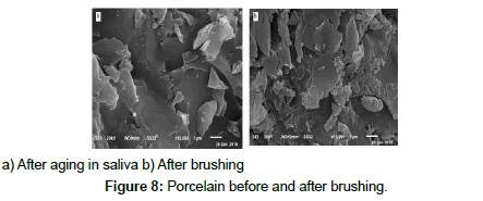 bioceramics-development-applications-Porcelain-before