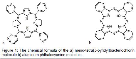 bioceramics-development-applications-bacteriochlorin-molecule