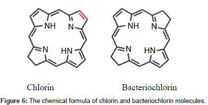 bioceramics-development-applications-bacteriochlorin-molecules