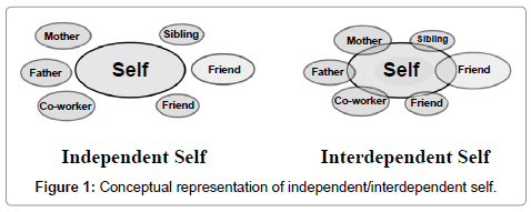 bioceramics-development-applications-independent-interdependent-self