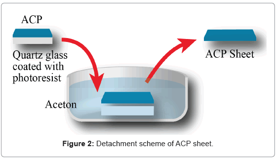 bioceramics-development-applications-scheme-ACP