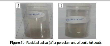 bioceramics-development-applications-zirconia-takeout