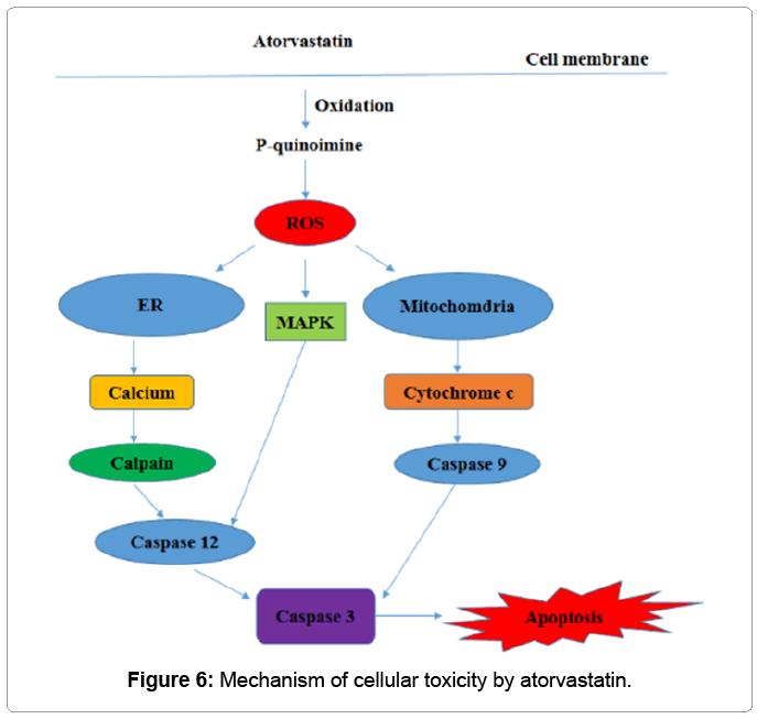 biochemistry-analytical-biochemistry-Mechanism