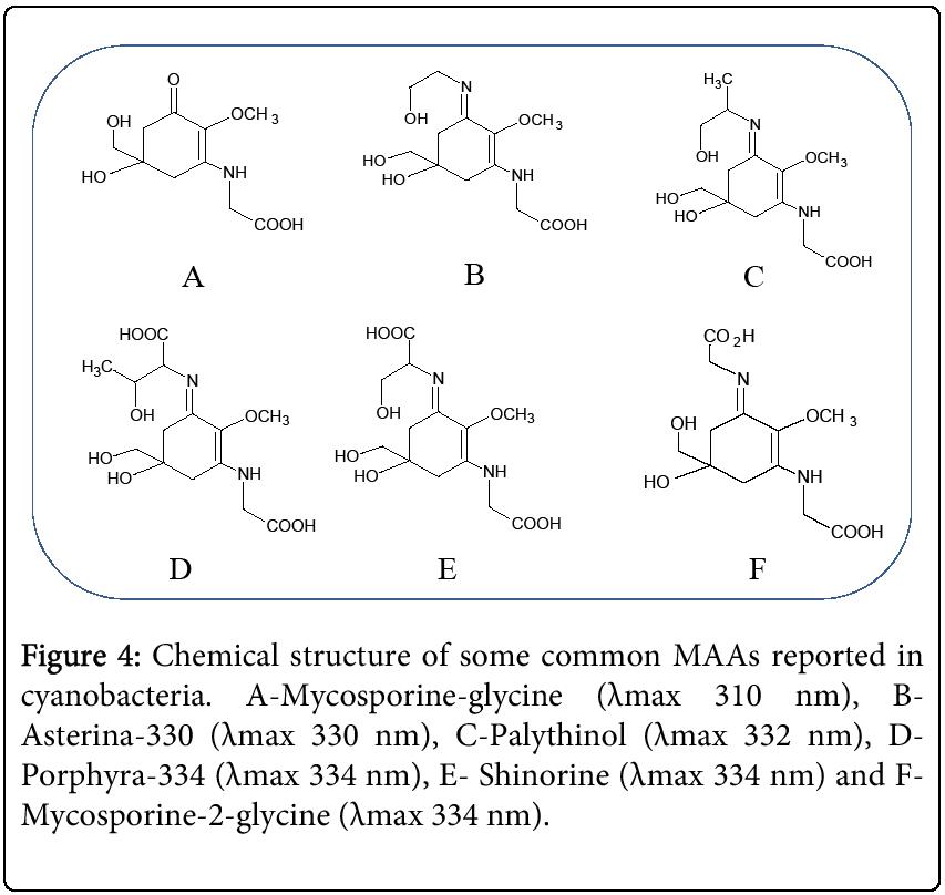 biochemistry-analytical-biochemistry-Mycosporine
