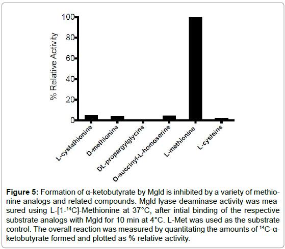 biochemistry-analytical-biochemistry-ketobutyrate-inhibited-methionine