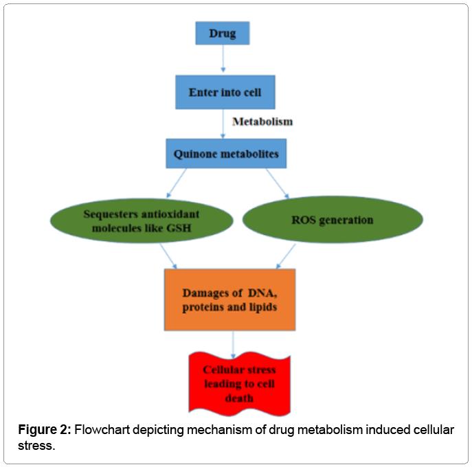 biochemistry-analytical-biochemistry-metabolism
