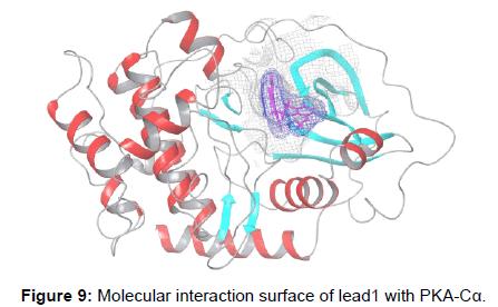 biochemistry-analytical-biochemistry-molecular-interaction-surface