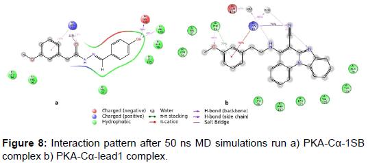 biochemistry-analytical-biochemistry-pattern-simulations-complex