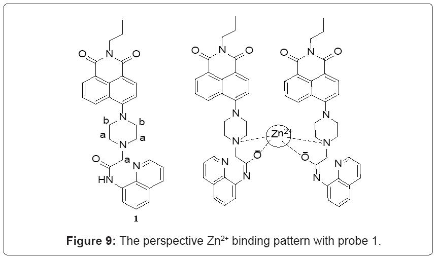 biochemistry-analytical-biochemistry-perspective