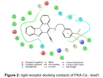 biochemistry-analytical-biochemistry-rigid-receptor-docking