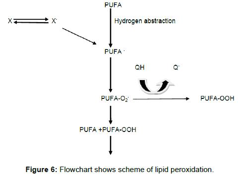biochemistry-analytical-biochemistry-scheme-lipid-peroxidation