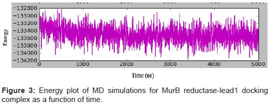 Docking and Molecular Dynamic Simulations of Legionella