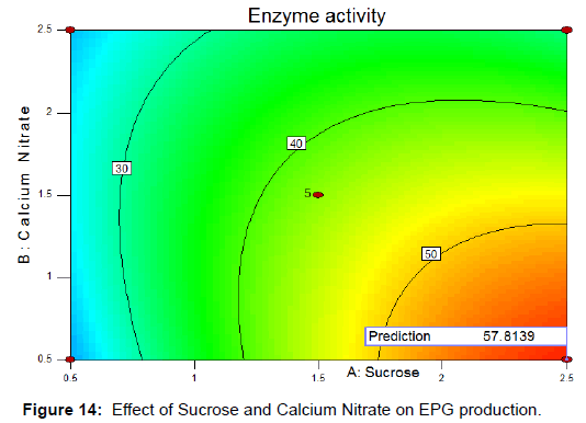 biochemistry-analytical-biochemistry-sucrose-calcium-nitrate