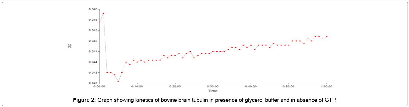 biochemistry-analytical-biochemistry-tubulin