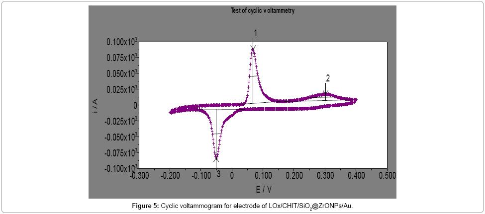 biochemistry-and-analytical-biochemistry-Cyclic-voltammogram