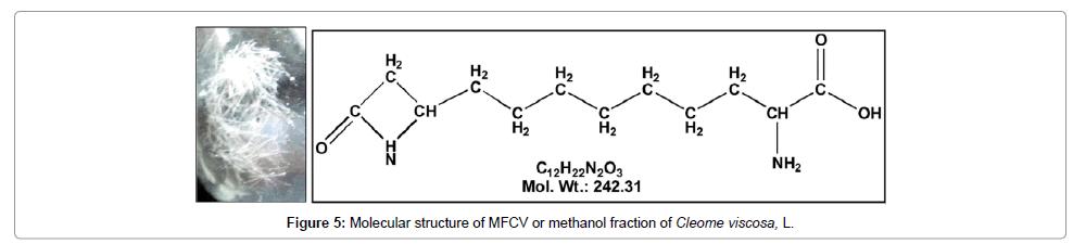 biochemistry-and-analytical-biochemistry-structure