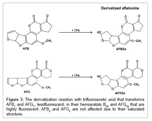 biochemistry-and-analytical-biochemistry-transforms