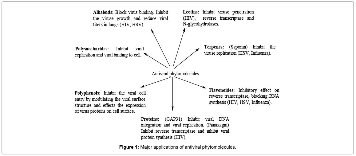 biochemistry-physiology-antiviral-phytomolecules